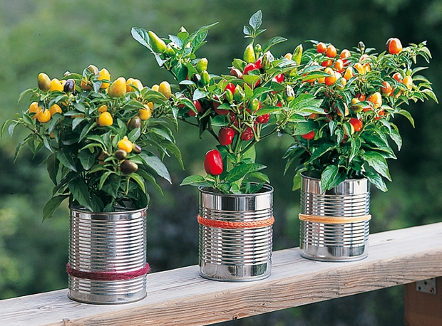 20 tin can craft ideas flower vases and plant pots for Idee deco vase