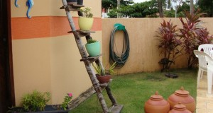 old-upcycled-ladder-shelves-with-plant-pots-backyard-decorating-ideas