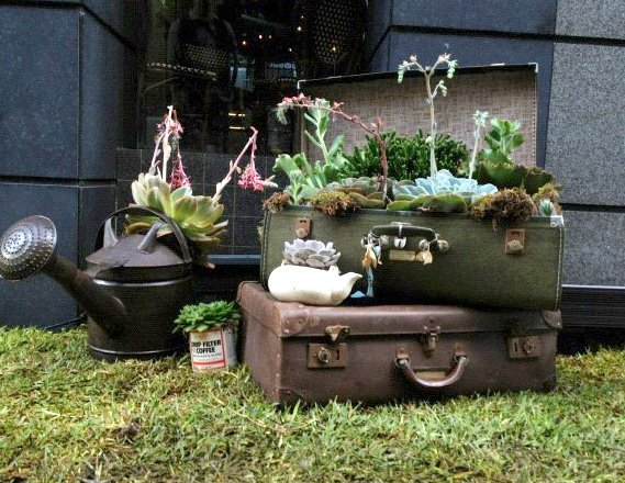 reuse old suitcases garden flower planters watering can decoration ideas