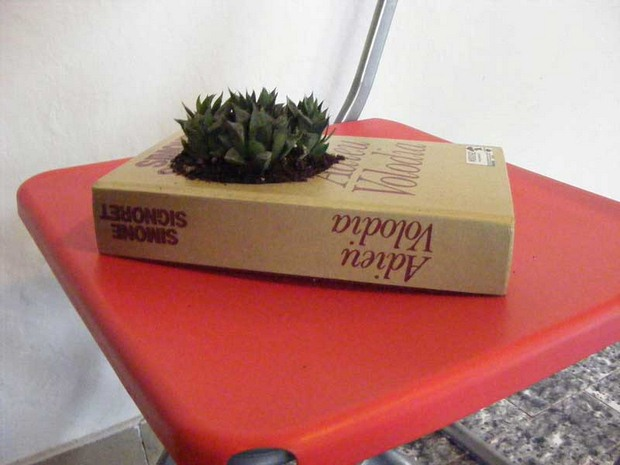 reuse old books succulent handmade planter indoor flower pot creative idea