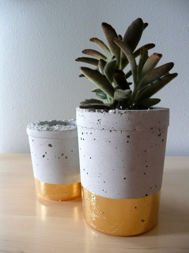 concrete amazing projects mini succulent pots reusing plastic cups