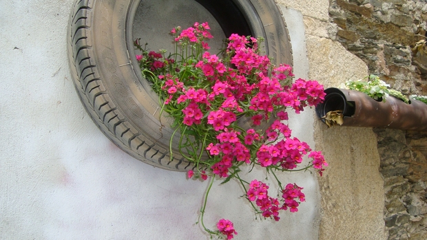 garden junk ideas reuse old tires wall flower planter pink geranium
