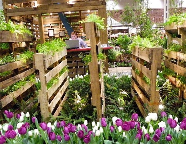 vertical garden white tulips upcycled wooden pallets