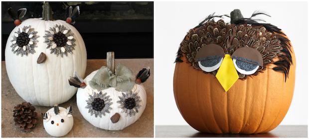 halloween pumpkin diy feather decoration owls carving pumpkin bird