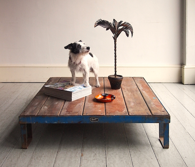 diy coffee pallet table vintage decor plant dog magazine furniture catalog