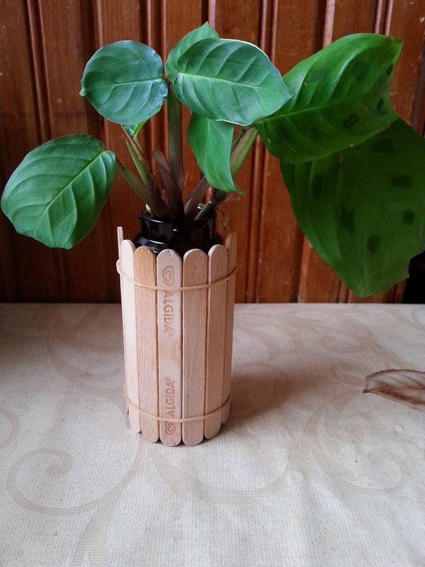 popsicle sticks flower pot diy indoor easy ideas