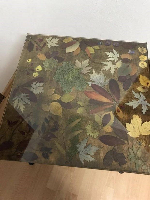 coffee table with autumn leaves unter glass top