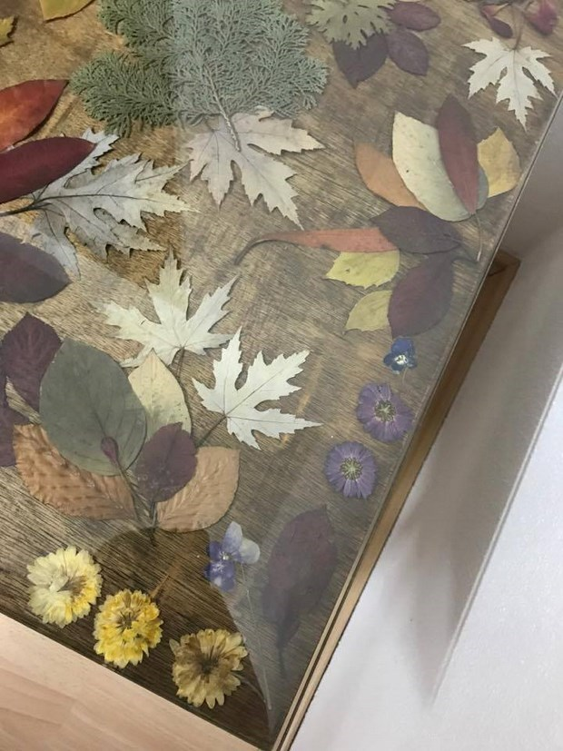 preserving autumn leaves and flowers for home decoration